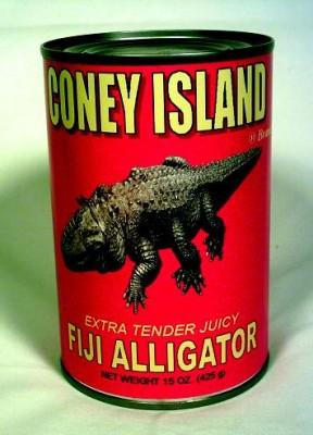 Takeshi Yamada - Fiji Alligator