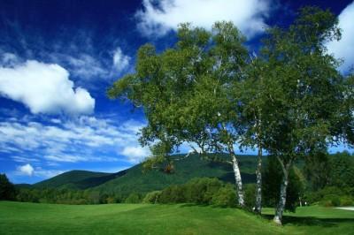 Holly Koffler - Vermont Golf Course