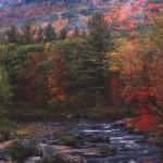 Horowitz - Landscape